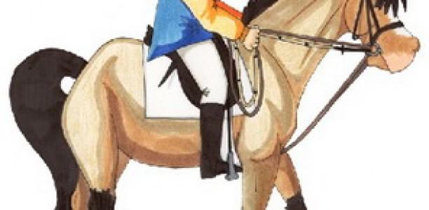 Sodobno šolanje konja ali kako čim hitreje do varljivih rezultatov