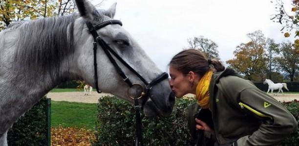 Theresa Sandin – Razlika med jahanim nejahanim konjem